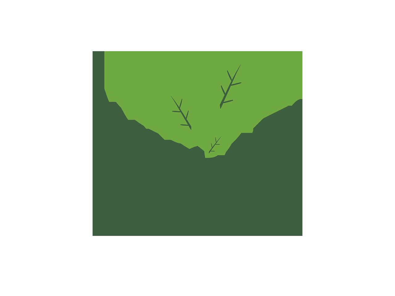 Whole Earth Sweetener logo